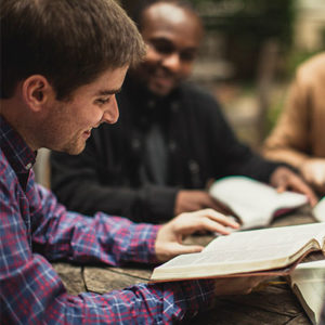 Men's Lifegroups